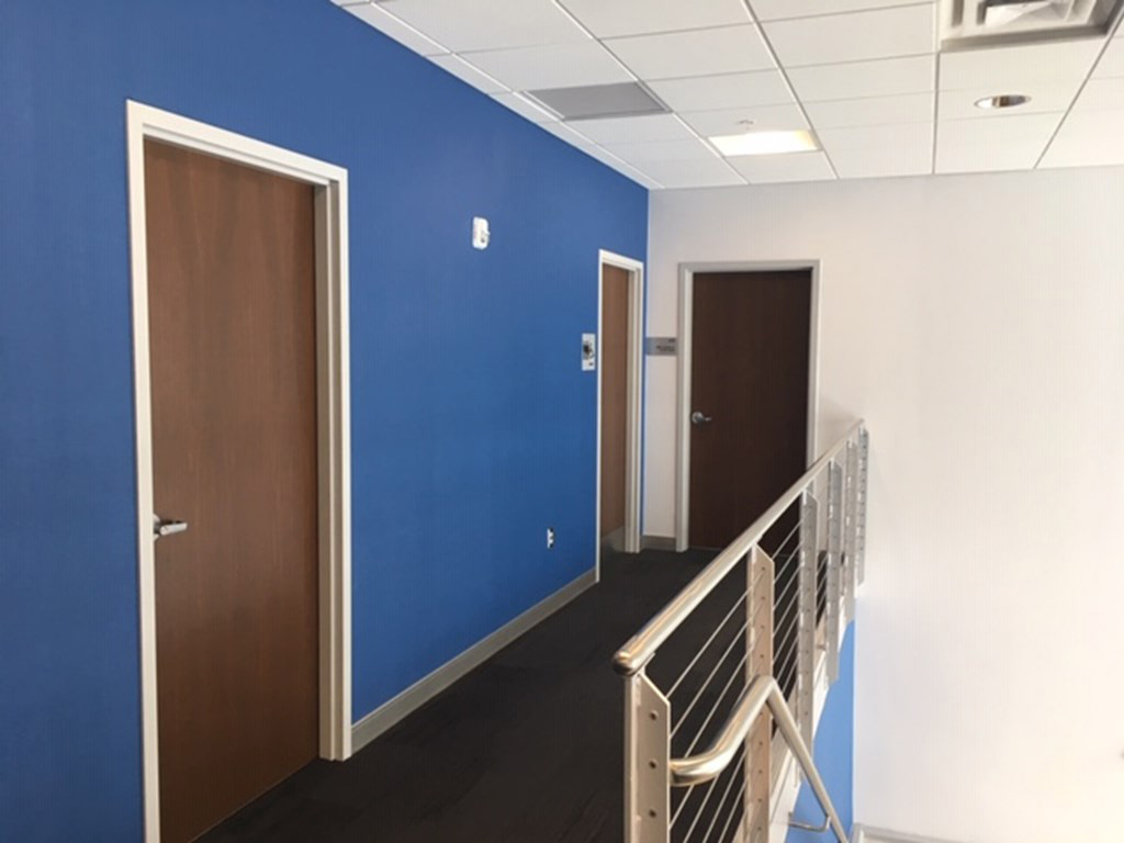 hallway with blue wall with three walnut wood door and hollow metal frames supplied by LaForce Inc.